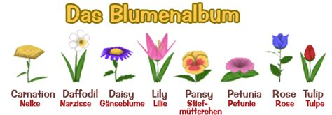 blumenarten mit bild blumen anpflanzen und die blumenarten forum for disney s