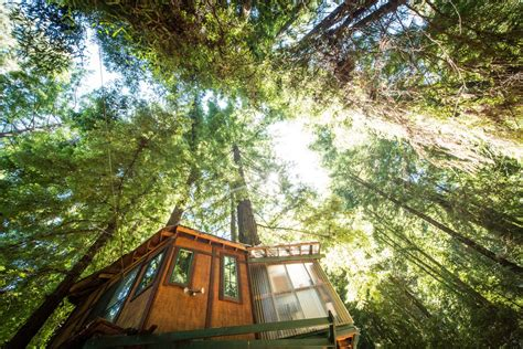 best tree houses tree house getaways glinghub com