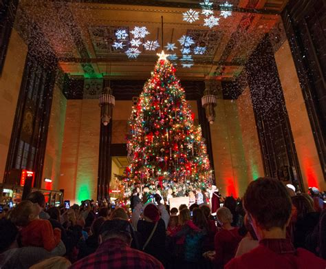 durham kicks off holiday events with christmas tree