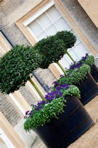 pots at the front of the house at althorp this summer