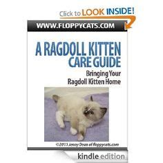 a ragdoll kitten care guide 1000 images about books worth reading on