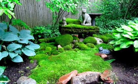 How To Clean Moss Patio by 30 Moss Garden Ideas Graffiti Statue Ornament Designs