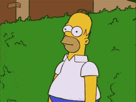 homer gifs find amp share on giphy
