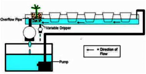 membuat hidroponik sistem dft cara membuat hidroponik sistem deep flow technique dft
