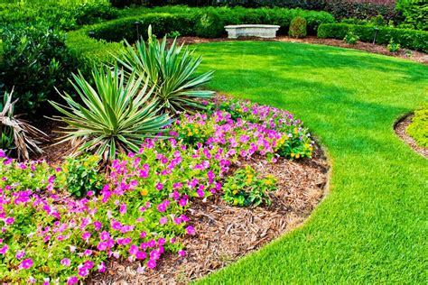 home flower bed kyprisnews