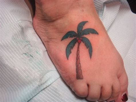 coconut tree on foot
