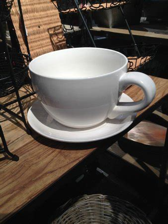 green nature coffee house cup picture of green nature coffee house new york city tripadvisor