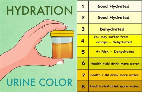hydration urine chart top 13 benefits of water