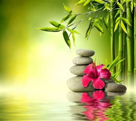 spa images hd 17 best images about relaxing on pinterest image search