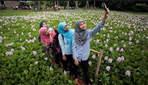Kalkun Bunga Tumbuhan setelah heboh selfie di taman amarilys gunungkidul kini