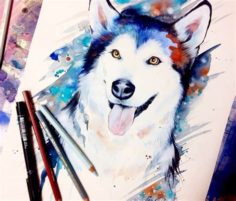 siberian husky watercolor painting by pixie cold no 2254