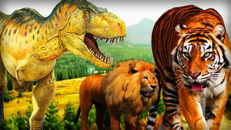 film lion vs tiger lion attack videos for children lion eating tiger in