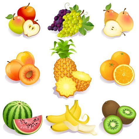 fruit o fresh fresh testy fruits pack free vector