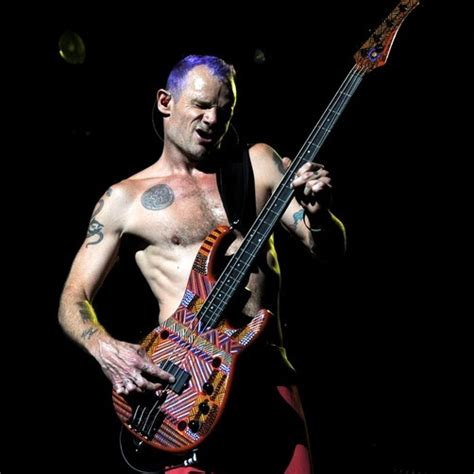 Flea Chili Peppers Bassist Loses Home In Malibu by Flea S Bass Guitar Gear Pedalboard S Equipboard 174