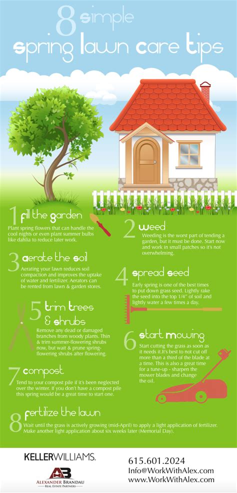 summer lawn care tips summer lawn care home design