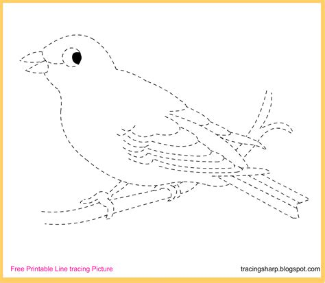printable tracing lines free tracing line printable canary tracing picture