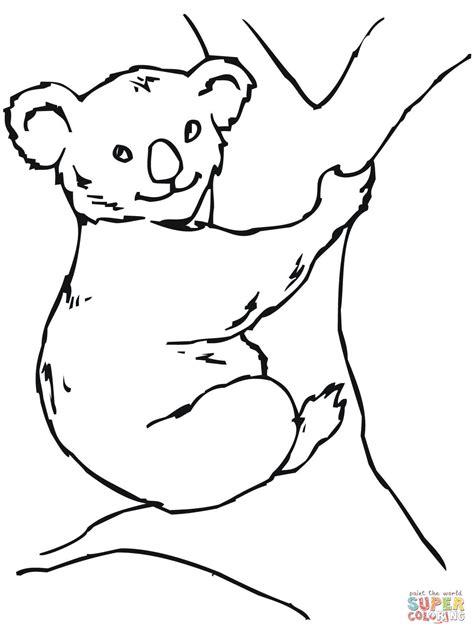 dibujos para colorear koala dibujo de koala para colorear dibujos para colorear