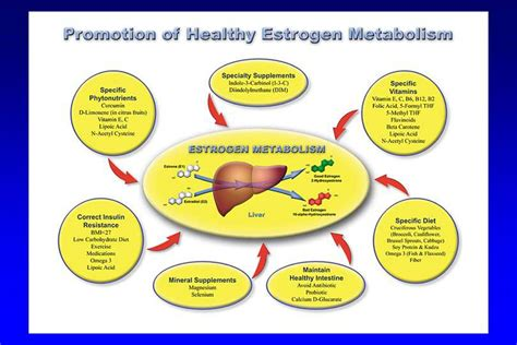 Estrogen Detox Diet For by Estrogen A Modern Health Epidemic Gestalt Reality