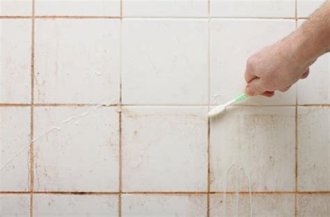 mildew on bathroom walls what mold in showers and fungi in gardens have in common