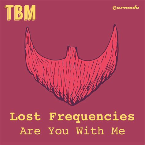 with me testo are you with me lost frequencies listen and discover