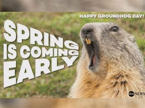 groundhog day live 2015 no shadow pennsylvania groundhog predicts early