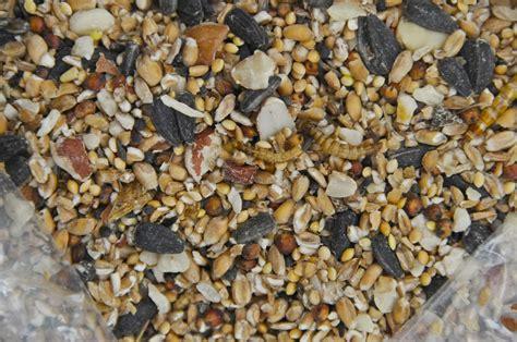 wild bird seed mixes twootz com