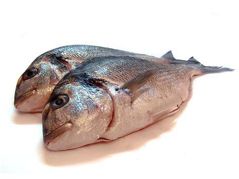 fish pescado cabeza pescado sazonado