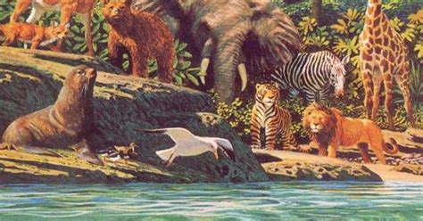 creation sea creatures  wild beasts  domestic