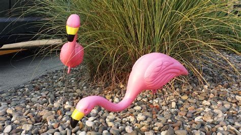 pink flamingo lawn ornaments brigantine new jersey where lawn ornaments go to die