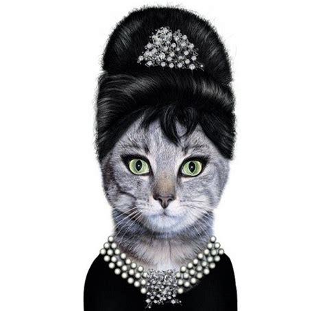 Iphone 66s Pets Rock Hepburn catsparella hepurrrn