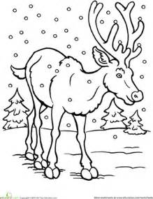 free coloring pages animals in winter worksheets education