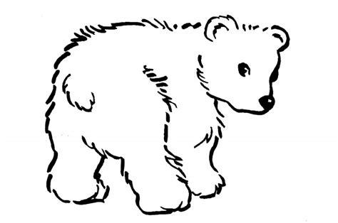 imagenes de jirafas y osos dibujos de osos para colorear y pintar