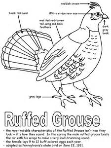ruffed grouse with labels