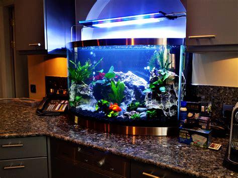 aquarium design application aquarium store uk visit our london shop for aquariums