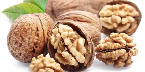 Kacang Kenari 5 khasiat mengejutkan dari kacang kenari merdeka