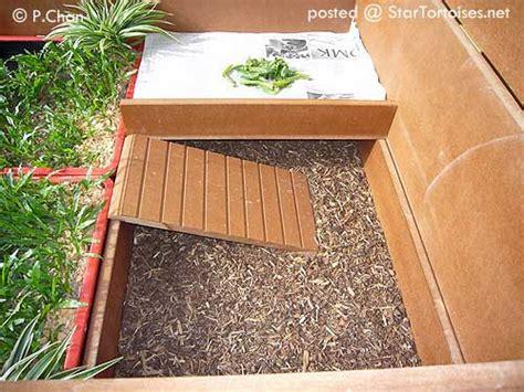 tortoise house plans plans for tortoise house house design plans