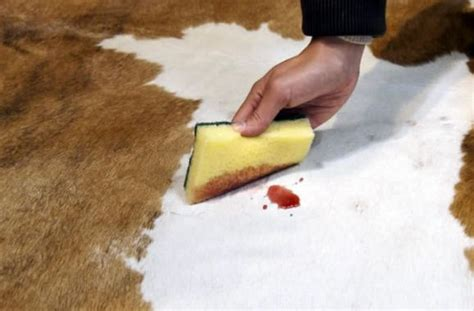 Cowhide Rug Cleaning - how to clean cowhide rug goodhome ids
