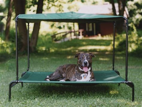 Outdoor Large Dog Bed W Canopy Raised Pellos Outdoor Furniture For Dogs