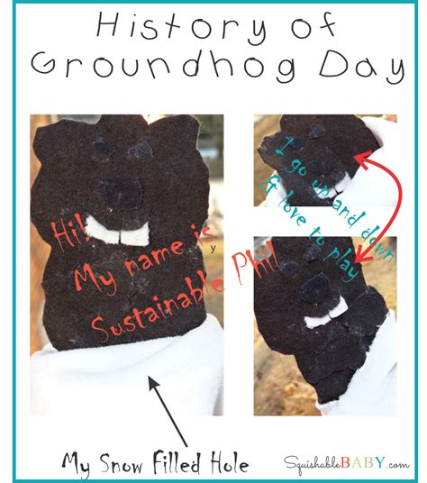 groundhog day history sustainable phil the history of groundhog day the