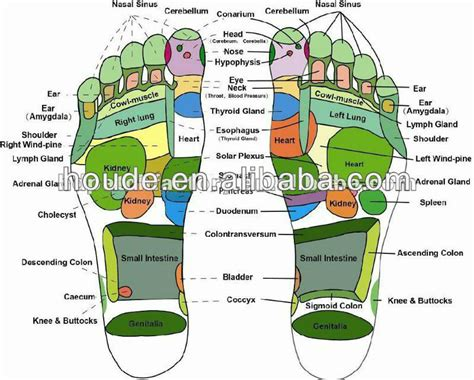 Detox Foot Pads Benefits by Detox Foot Patch Murah View Detox Foot Patch Murah Hold