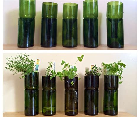 upcycled wine bottles  indoor herb planters