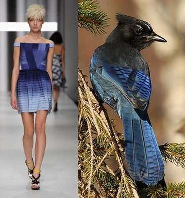 Thesa Dress By Naura 4warna Gamis avian fashion bird inspired designs