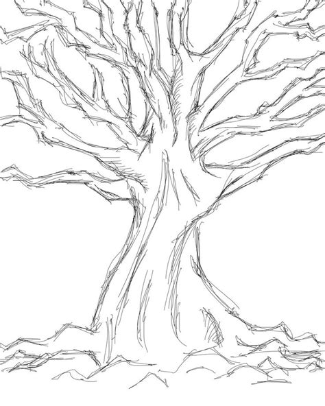 simple tree drawing images for gt simple tree sketches images wedding tree