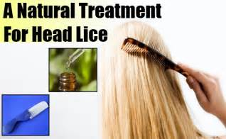 lice home treatment lice remedies and hair lice home treatment