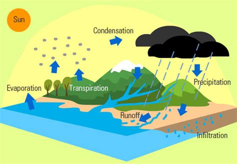 water cycle diagram with explanation the water cycle