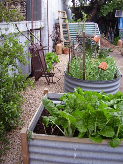 galvanized garden containers 24 best images about galvanized containers on