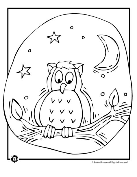 coloring page forest animals forest animal coloring pages bestofcoloring com