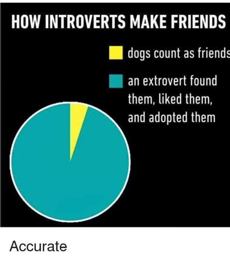 How To Make Meme Videos - how introverts make friends dogs count as friends an