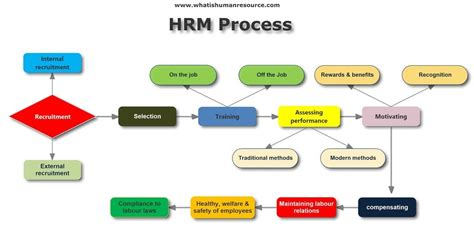 human resource management   hrm definitions functions objectives importance