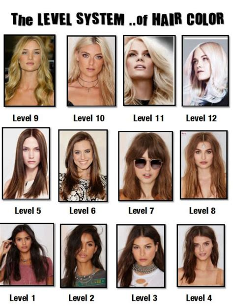 hair color levels my affair with cosmetics hair tipstrickshair color